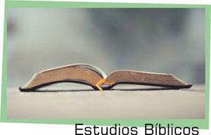 programas_estudios